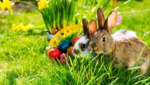 Húsvéti zsongás